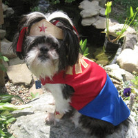 Wonder Woman inspired Dog Costume/Outfit Size Extra Small- Extra Large