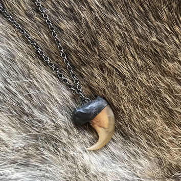 Bobcat Claw Necklace