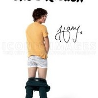(11.7 X 8.3) One Direction 1D Harry Styles Signed (Pre-print Autograph) Print