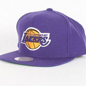ONETOW Mitchell & Ness Los Angeles Lakers Basic Logo Snap Back Hat in Purple