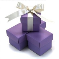 Koyal 2-Piece 10-Pack Square Favor Boxes, Lavender