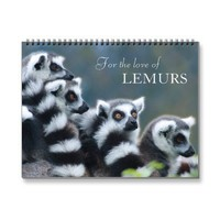 2013 For the love of lemurs  photo calendar from Zazzle.com