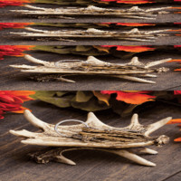 Faux Antler Tray