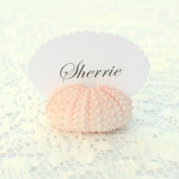 10 Natural Pink Sea Urchin Shell Place Wedding Card Name Holders - Natural Eco Beach Reception Table Chic Decor - Guest Escort Card Favor