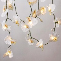 White Orchid String Lights - New Summer Finds - Lighting