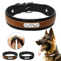 Customized Dogs ID Collars