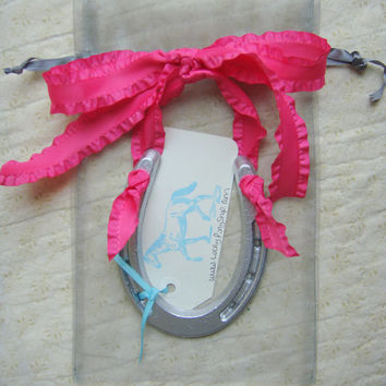 Lucky Hand Painted Silver Pony Horseshoe- Hot Pink Ruffle Bow-silver horse shoe, good luck gift, horseshoe art