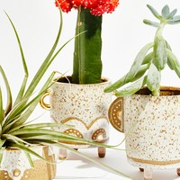 Free People Trio Planter Set