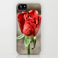 Red Rose Red iPhone Case by J Coe Photography | Society6