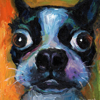 Cute Boston Terrier Puppy Art Painting by Svetlana Novikova - Cute Boston Terrier Puppy Art Fine Art Prints and Posters for Sale