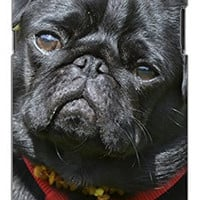 Adorable Black Pug Dog Direct Print (not a sticker) Unique Quality Hard Snap On Case for Samsung Galaxy Note 2 Note II N7100 (WHITE)