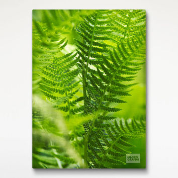 Green Fern Leaves Canvas Wrap, Nature Decor, Green Canvas Print, 16x20