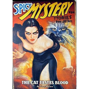 Pulp Fiction Novel Art Poster Spicy Mystery Cat Tastes Blood 27inx40in
