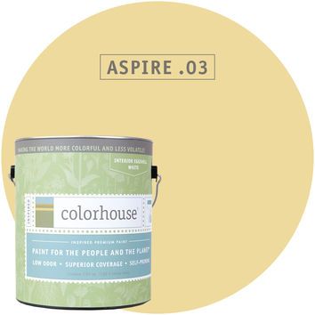 Paint by Colorhouse ASPIRE .03