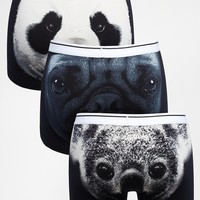 ASOS 3 Pack Trunks With Animal Faces Print
