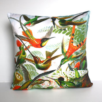 Decorative pillow, throw cushion, bird pillow, HUMMINGBIRDS by Ernst Haeckel  Organic cotton,cushion cover, pillow, 16 inch, 41cm