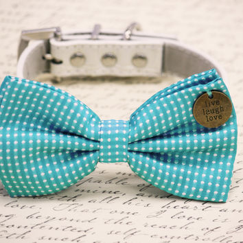 Blue Dog Bow Tie collar, Live Love Laugh charm, Polka dots wedding