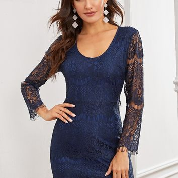 Solid Sheer Lace Bodycon Dress