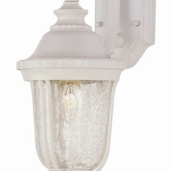 "Trans Globe Lighting 4020 20"" Crackle Glass Outdoor Wall Light Lantern"