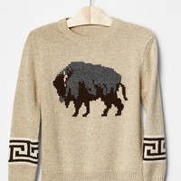 Gap Boys Intarsia Crewneck Sweater