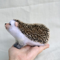"""Hedgehog """"Cutie""""... I will make this item for your order"""