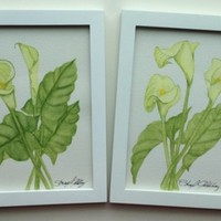 Calla Lilly, Two Framed Original Watercolor Paintings of Calla Lilly