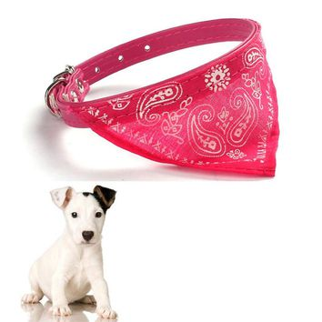 dog collars pet products for dogs