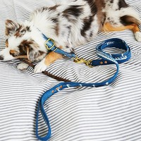 Free People Coastline Leash