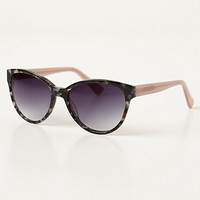 Galen Sunglasses