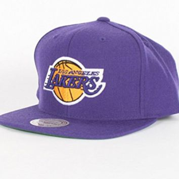 Mitchell & Ness Los Angeles Lakers Basic Logo Snap Back Hat in Purple