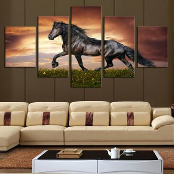 Art Oil Painting 5 Pcs Large HD Horse Grass No Frame