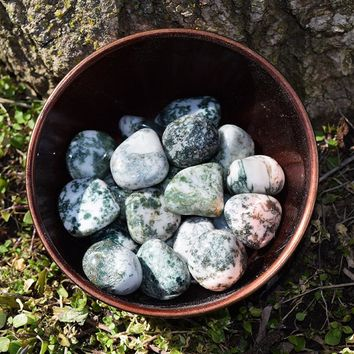 Tree Agate Stone - Calm & Peace, Connection to Nature