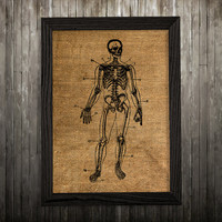 Skeleton decor Anatomy poster Medical print Rib cage print BLP497