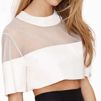 White Mesh Short Sleeve Cropped Top