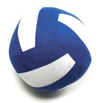 Soft Autograph Volleyball Pillows in Lots of Colors...
