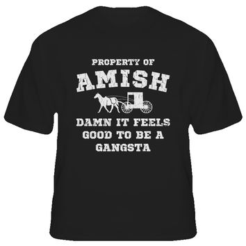 Youth Damn It Feels Good to Be A Gangsta T-Shirt
