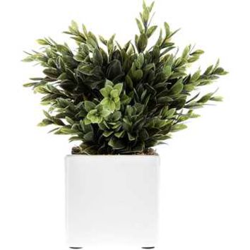 Plastic Boxwood in White Ceramic Pot | Hobby Lobby | 275842