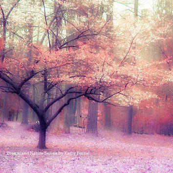 Nature Photography, Autumn Fall Woodlands Landscape, Dreamy Autumn Nature, Pink Purple Orange Fall Trees, Fine Art Fantasy Nature Photo 9x12