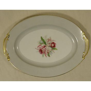 Noritake 5049 Vintage Serving Platter 12in x 9in x 1in China Gold Rim -- Used