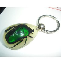 Avril beautiful brand exquisite pure Handmade emerald beetle insect amber Keychain