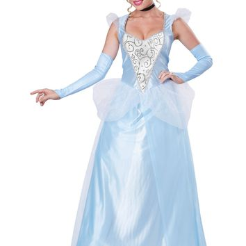 Classic Cinderella Blue Dress Costume (Large,Blue/White)