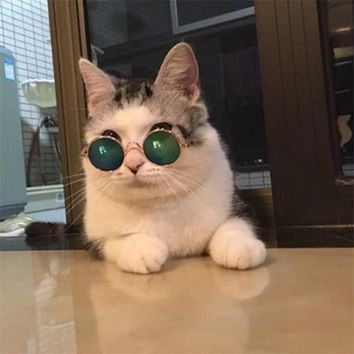1pcs Lovely Pet puppy kitten sunglasses Fashion Cat Sunglasses Pet Accessories Summer Dogs Cats Glasses Grooming random color
