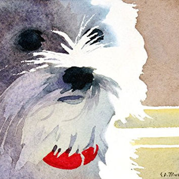 A Dog Named Whiskers, Giclee Print of Watercolor Pet Portrait, Showing a Little White Dog with a Red Collar, 7 X 9 Inches