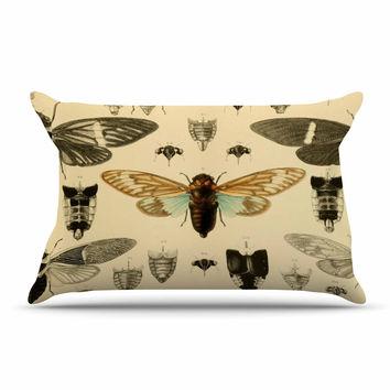 "Suzanne Carter ""Vintage Cicada"" Bugs Pattern Pillow Case"