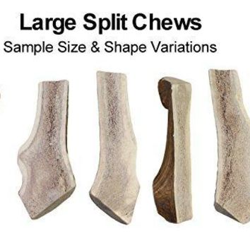 Large, Split, Single Pack - Grade A Premium Elk Antler Chew for 30+ lb dogs – Naturally shed from wild elk – No Mess, No Odor – – Made in the USA