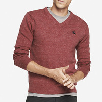 NEP KNIT SMALL LION V-NECK SWEATER from EXPRESS