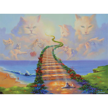 Somewhere On The Other Side Cat Sympathy Greeting Card
