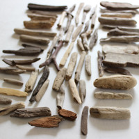 driftwood sampler collection of 60 small Pieces for Beach Decoration and Nautical Wedding Decor D   (end60)