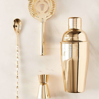 Metallic Bar Cocktail Shaker Set - Urban Outfitters
