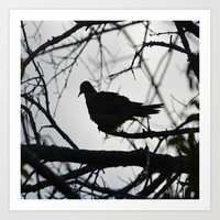 Black Bird Art Print by Laura Santeler
